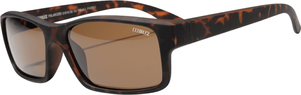 Bliz Polarized Brown A 1
