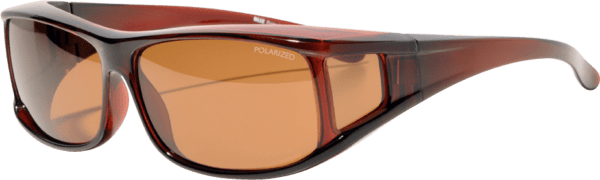 Bliz Polarized OTG Brown C 1