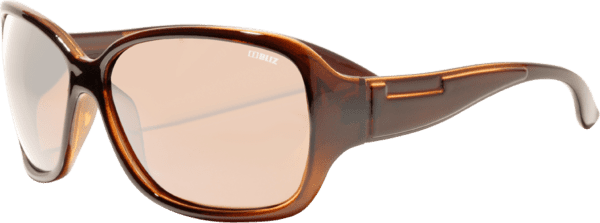 Bliz Polarized Brown B 1